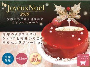 完熟いちご,ショコラ,クリスマスケーキ