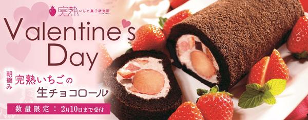 【2月10日締切りです! 】朝摘み完熟いちごの生チョコロール